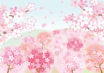 桜の開花情報「大阪」の先取り情報!?