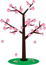 大阪の桜の名所造幣局桜の通り抜けの行き方は?おすすめルートは?